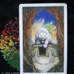 bear, courage, challenge, wasting, fear, tarot