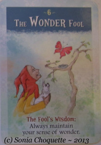The Wonder Fool